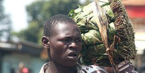 A miraa trader in Mutuati market in Igembe North district