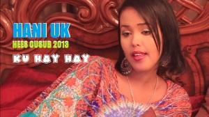 HANI UK - HEES CUSUB - KU HAYHAY PICTURE