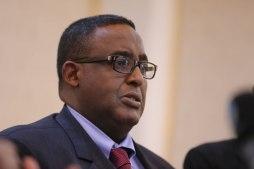 PM Somalia